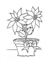 Бесплатные раскраски цветов цветок в горшке цветы раскраски онлайн бесплатно