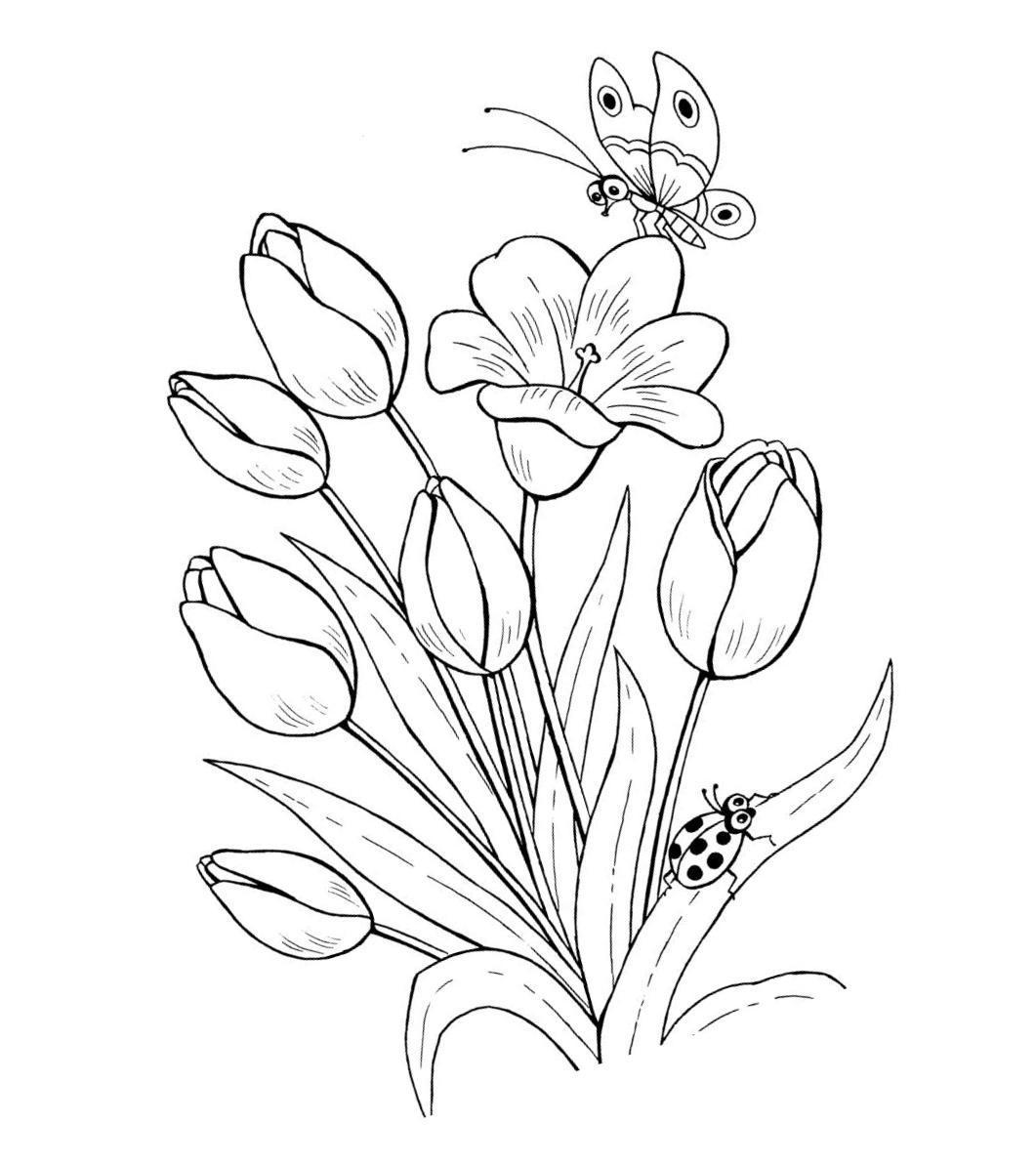 Раскраски онлайн с цветами