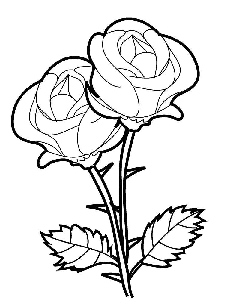 Раскраски с цветами и бабочками онлайн
