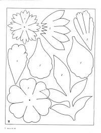 Цветы, лепестки, листья Раскраски с цветами распечатать бесплатно