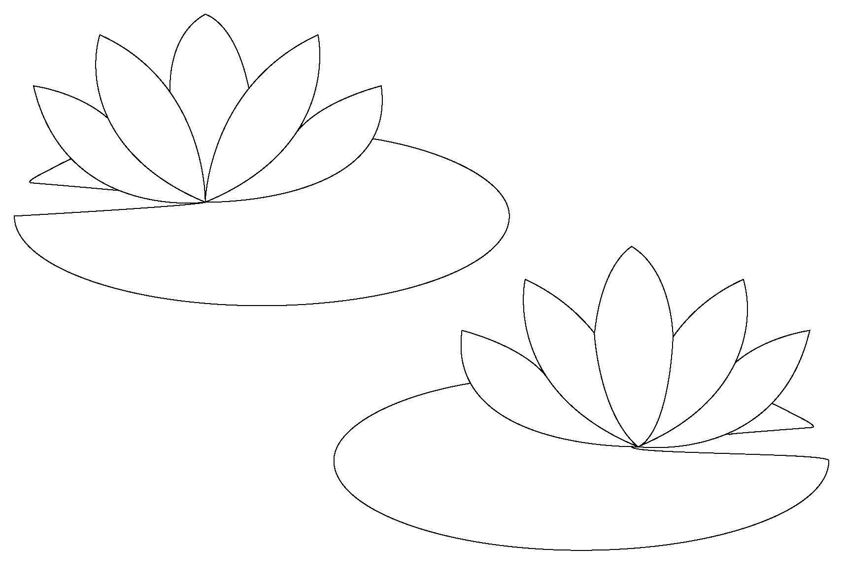 Кувшинки контуры для поделок Раскраски с цветами распечатать бесплатно