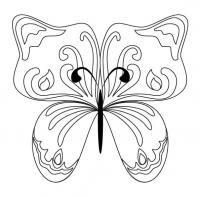 Бабочка узоры с цветами Раскраски с цветами распечатать бесплатно