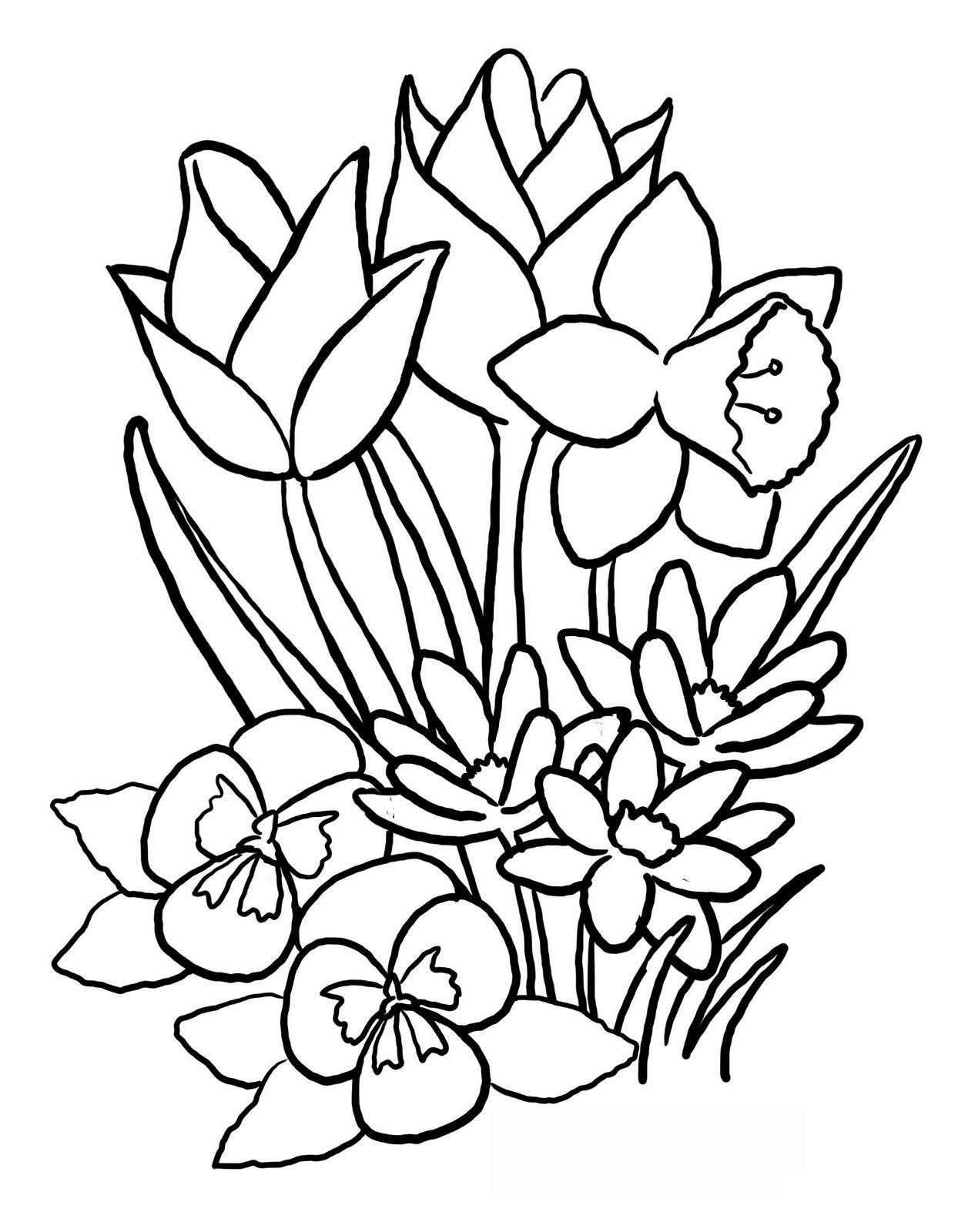 Полевые цветы на лугу Раскраски цветов бесплатно