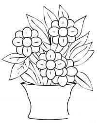 Цветок в горшке комнатные цветы Раскраски с цветами распечатать бесплатно