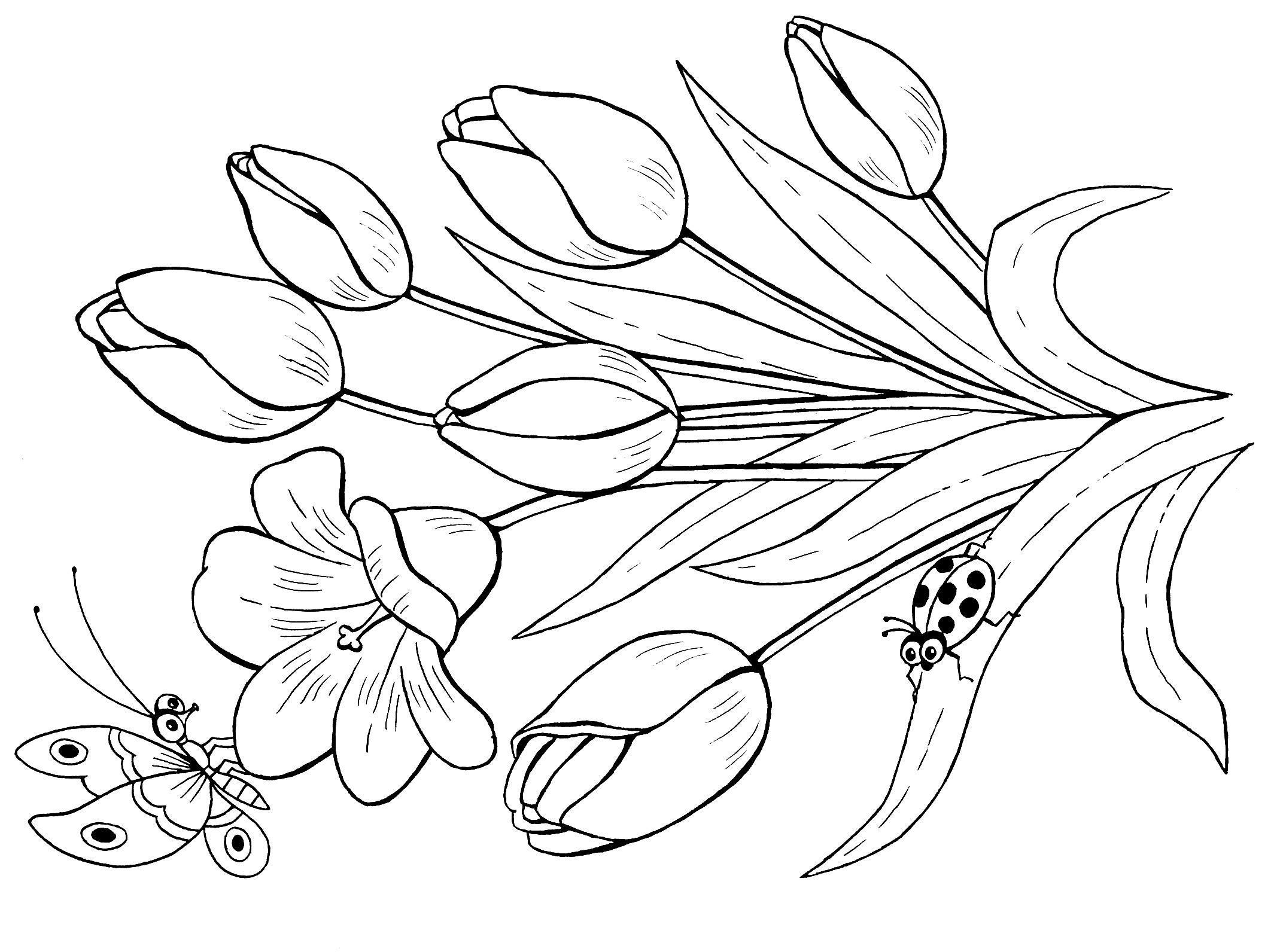Фото цветов тюльпанов в вазе