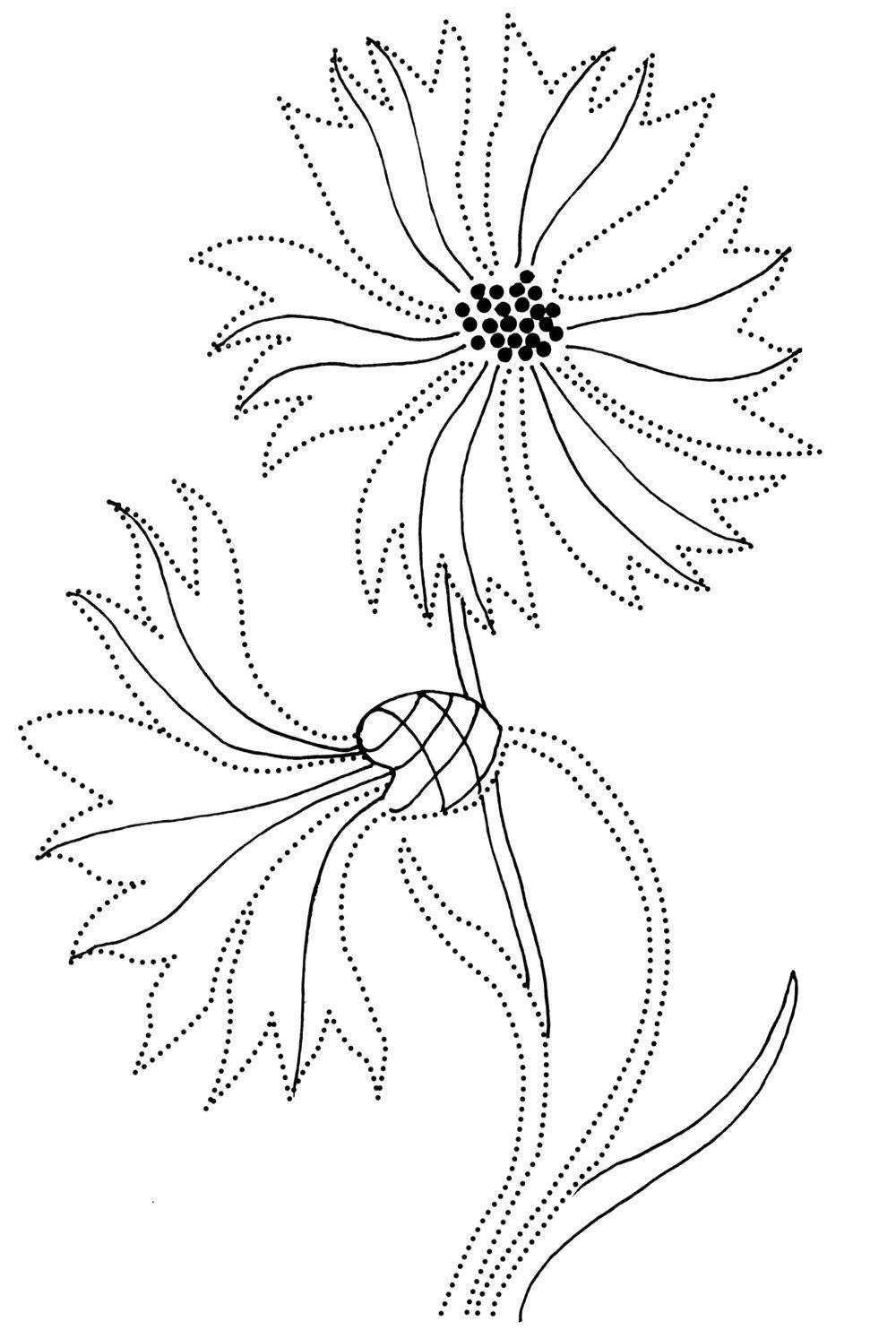 Соедини по точкам и раскрась васильки Раскраски с цветами распечатать бесплатно