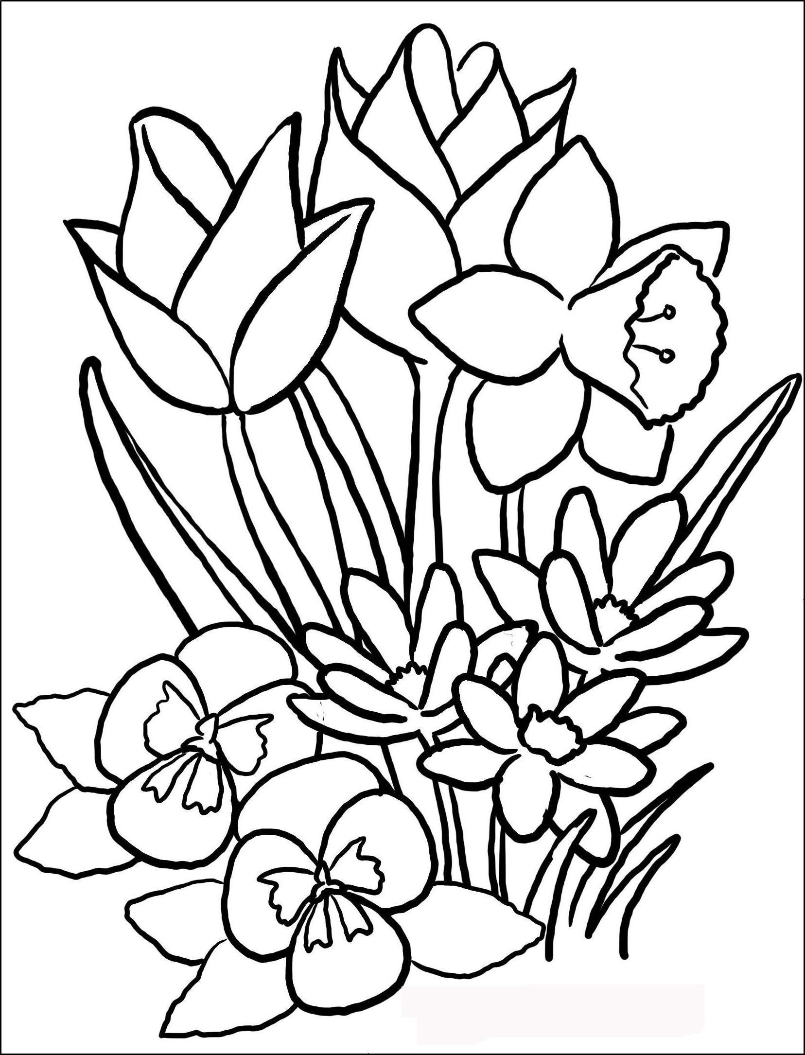 Картинки для детей цветы раскраски