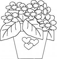 Цветы в горшке с сердечком Раскраски с цветами распечатать бесплатно