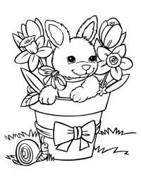 Цветы в горшке с зайчиком, бантик Раскраски с цветами распечатать бесплатно