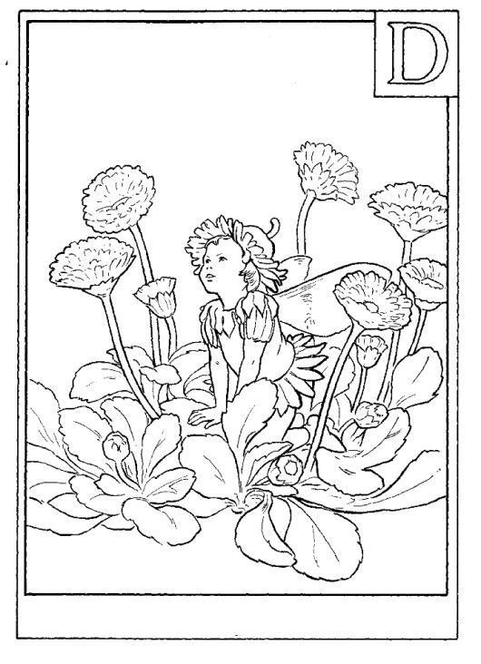 Одуванчик и девочка Раскраски с цветами распечатать бесплатно