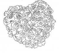 Розы в форме сердца Раскраска цветок для скачивания