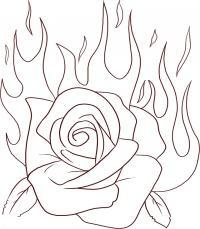 Роза в огне Раскраска цветок для скачивания
