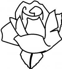Роза Раскраска цветок для скачивания