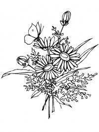 Ромашки в букете Раскраска цветок для скачивания