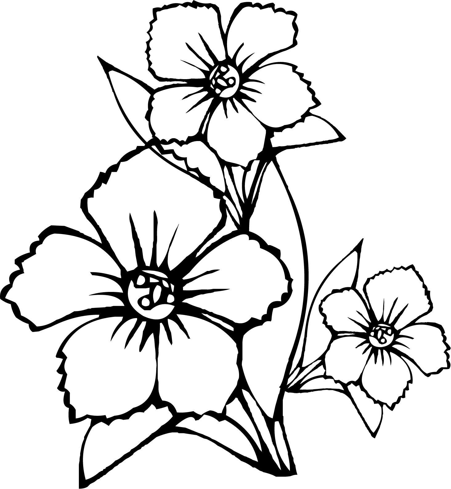 Цветочки с волнистыми лепестками цветы раскраски онлайн бесплатно