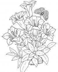 Красивые цветы цветы раскраски онлайн бесплатно