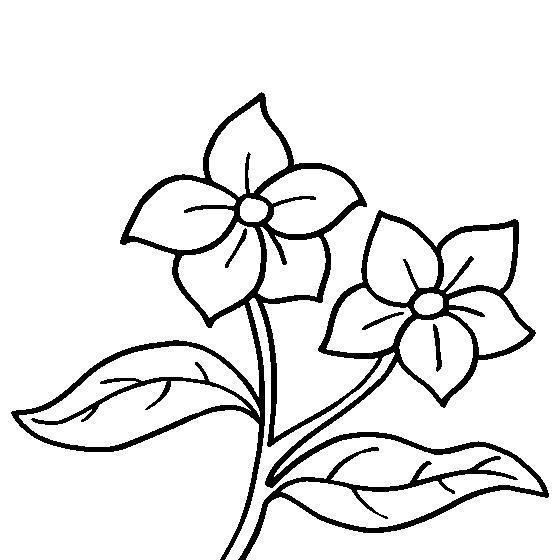 Маленькие цветочки цветы раскраски онлайн бесплатно