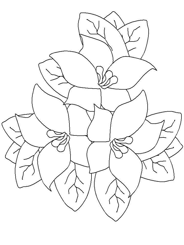 Цветочки цветы раскраски онлайн бесплатно
