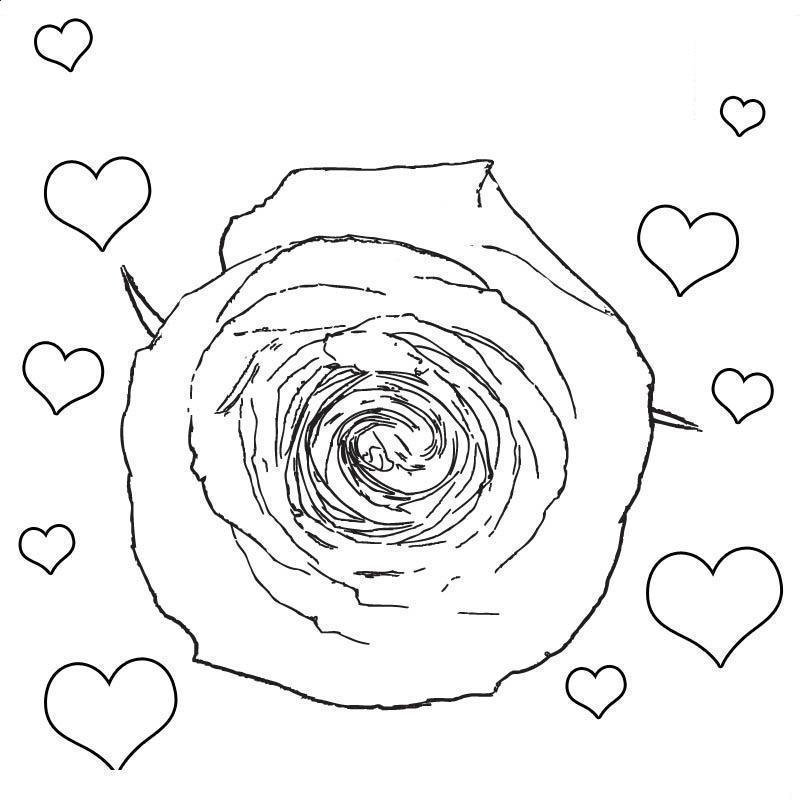 Роза с сердечками Раскраски цветов бесплатно