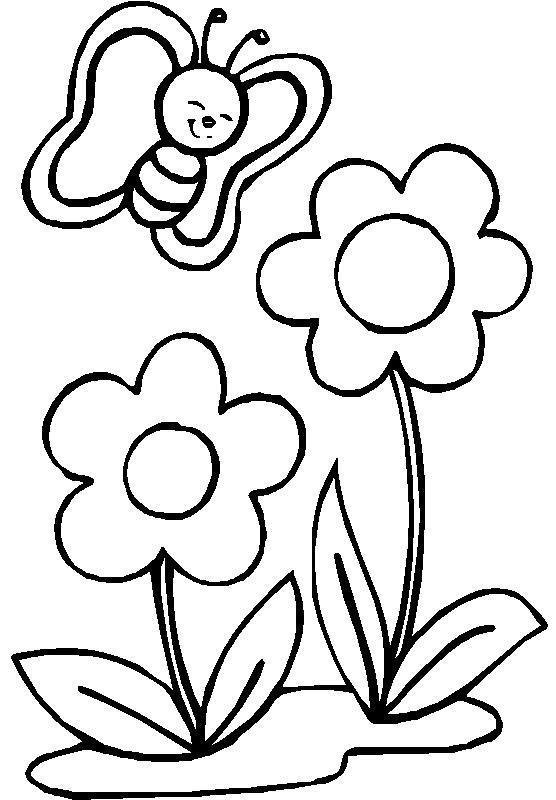 С бабочками ромашки Раскраски цветы для детей