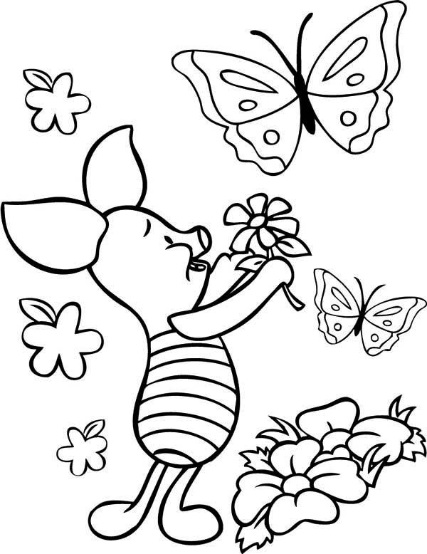 С бабочками пятачек Картинки раскраски цветы