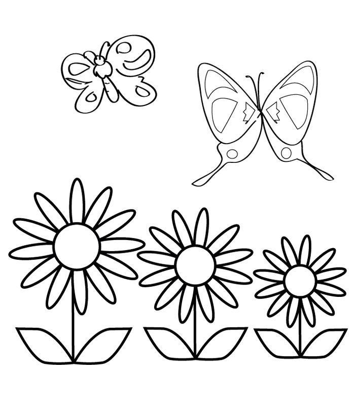Ромашки с бабочками