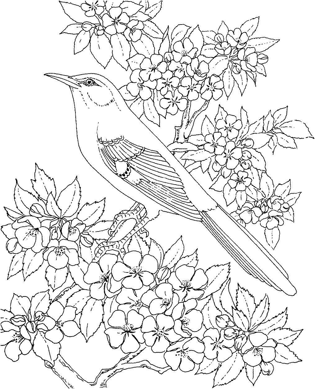 Цветущее дерево с птицами