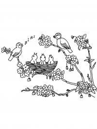 С птицами соловьи поют с птенцами Новые раскраски цветы