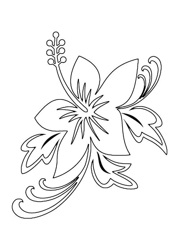 Экзотический цветок Раскраски с цветами распечатать бесплатно