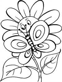 С улыбкой подсолнух и большая бабочка Скачать раскраски с цветами