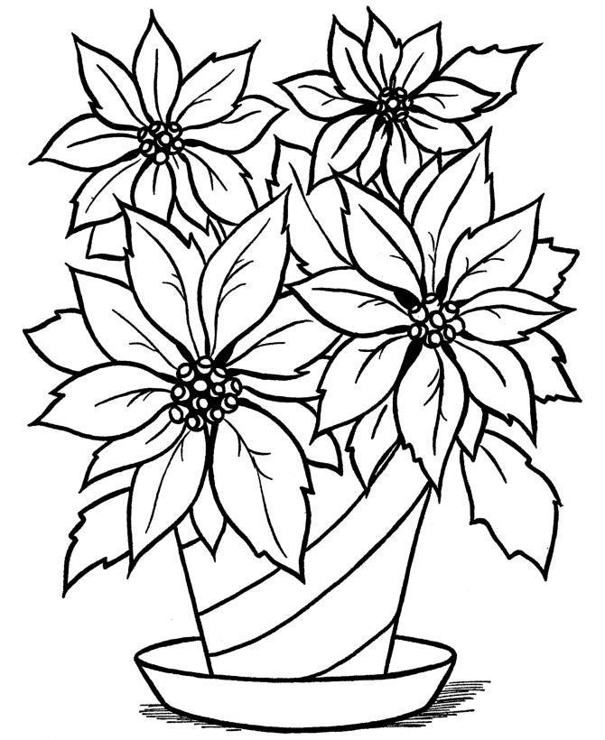 Раскраска цветка в горшке