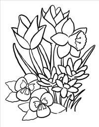 Весенние полевые цветы цветы раскраски онлайн бесплатно