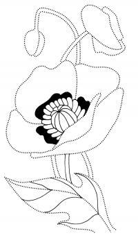Лепестки цветов мака Разукрашки цветы