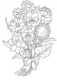 Цветы анютины глазки, нарциссы, гвоздики и ромашки цветы раскраски онлайн бесплатно