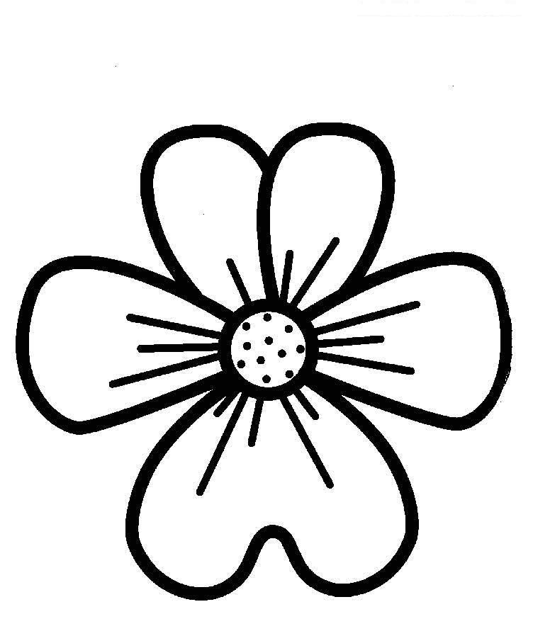 Для малышей большой цветок Фото раскраски цветы