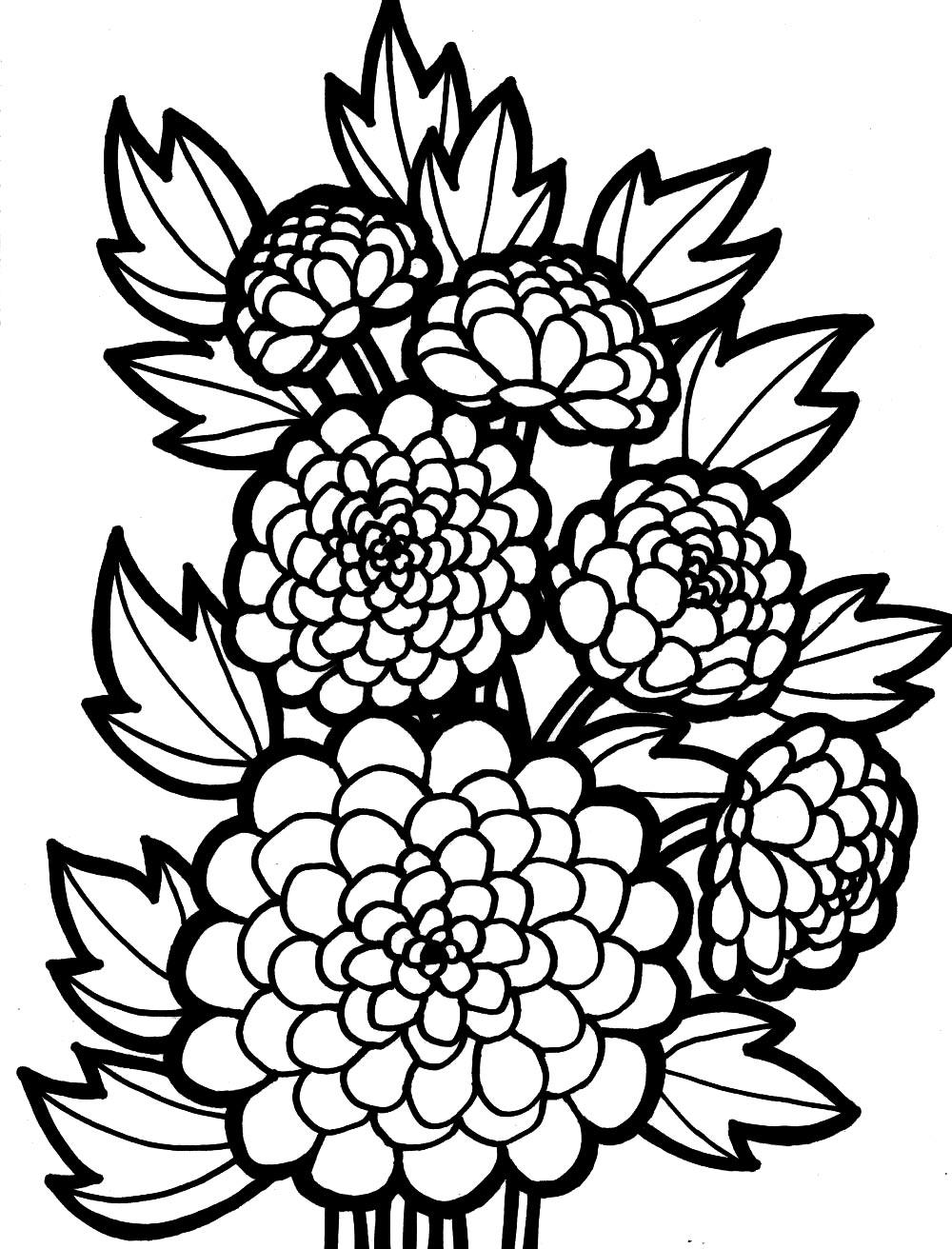 Георгины для малышей Фото раскраски цветы