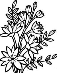 Для малышей цветы с лмстьями Фото раскраски цветы