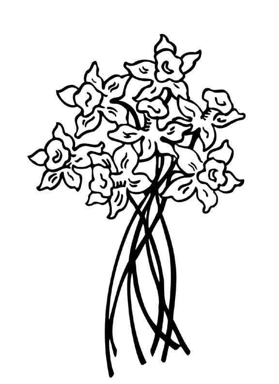 Цветы на тонких ножках Фото раскраски цветы