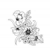 Очень красивый цветок Раскраски цветы скачать