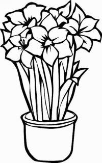 Букет нарциссов в горшке для мамы Детские цветы распечатать