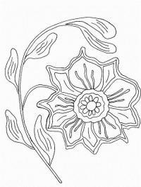 Очень красивый мак Распечатываем раскраски цветы бесплатно