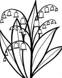 Цветущие ландыши Раскраски цветы для детей