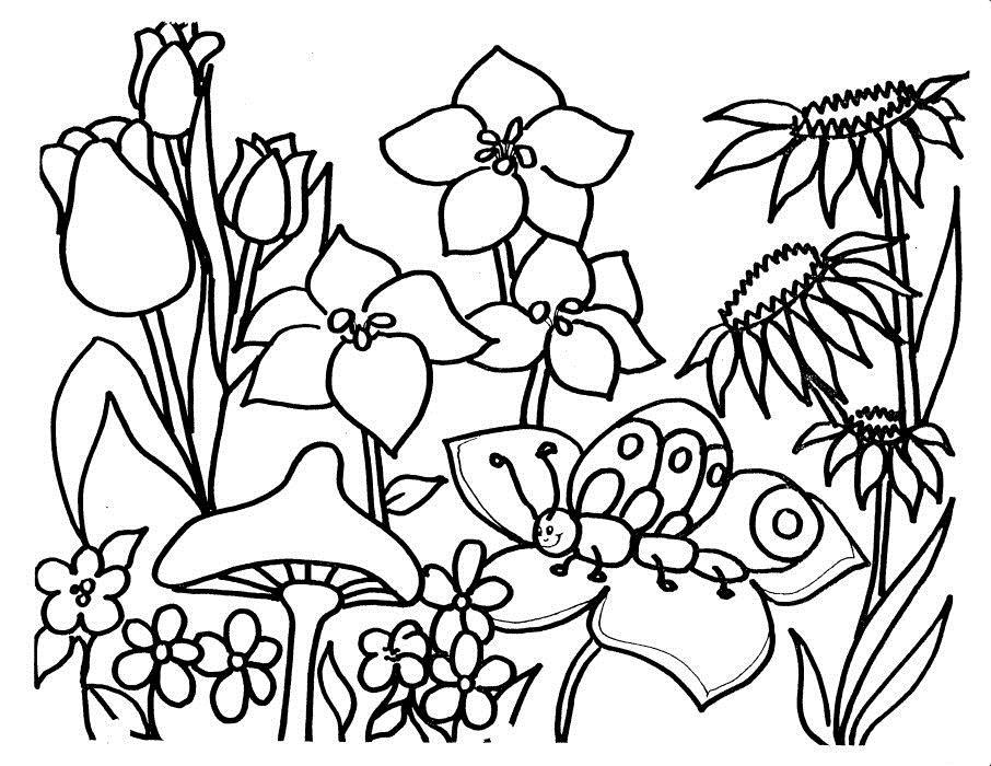 Раскраски полянки с цветами