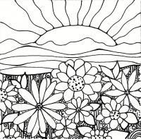 Поле цветов на рассветет Раскраски цветы скачать