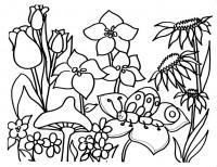 Поле цветов с гусеничкой Раскраски цветы скачать