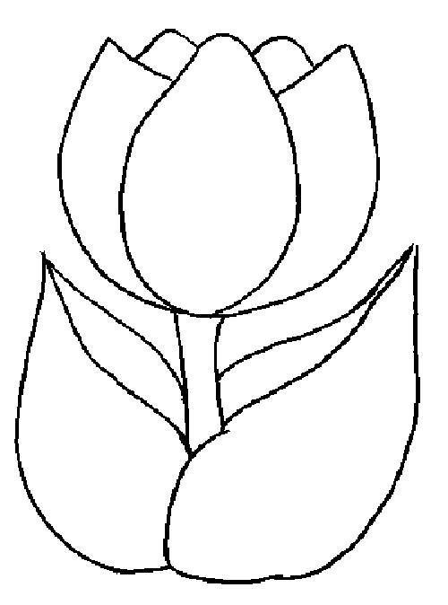 Раскраски для малышей цветы