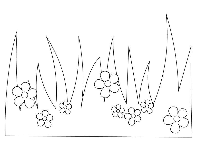 Полянка цветов Фото раскраски цветы