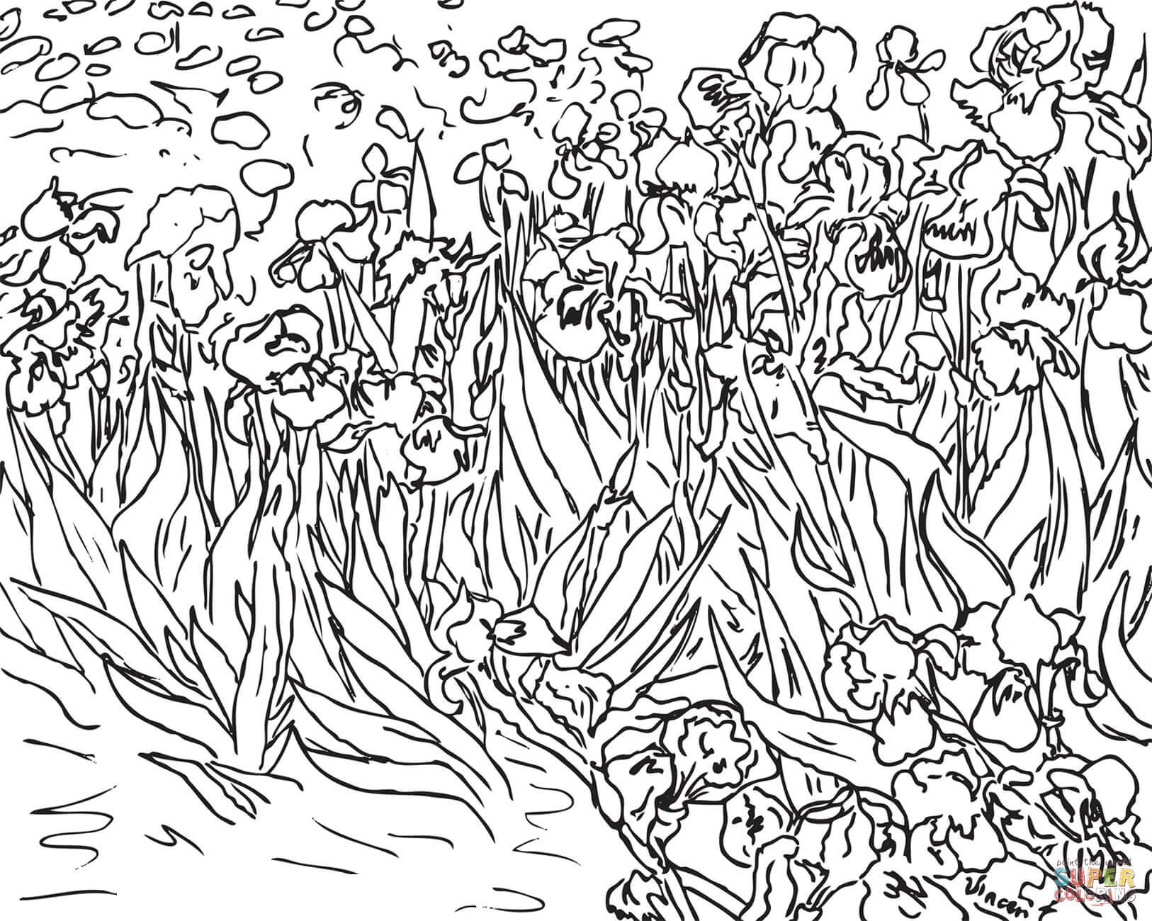 Поле цветов, поле ирисов Детские цветы распечатать