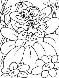 Бабочка на цветке Раскраски цветы скачать