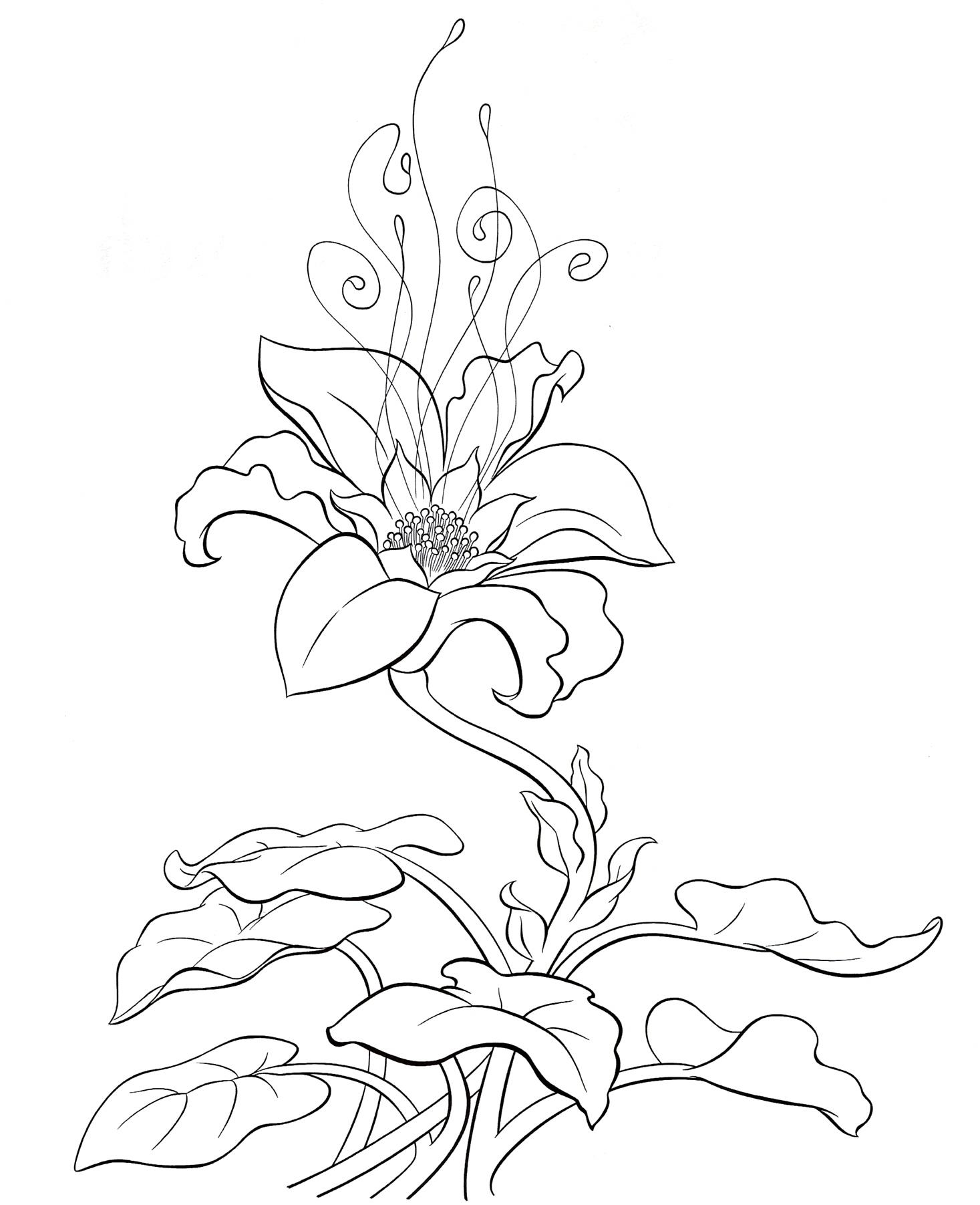 Волшебные цветы Раскраска цветок для скачивания